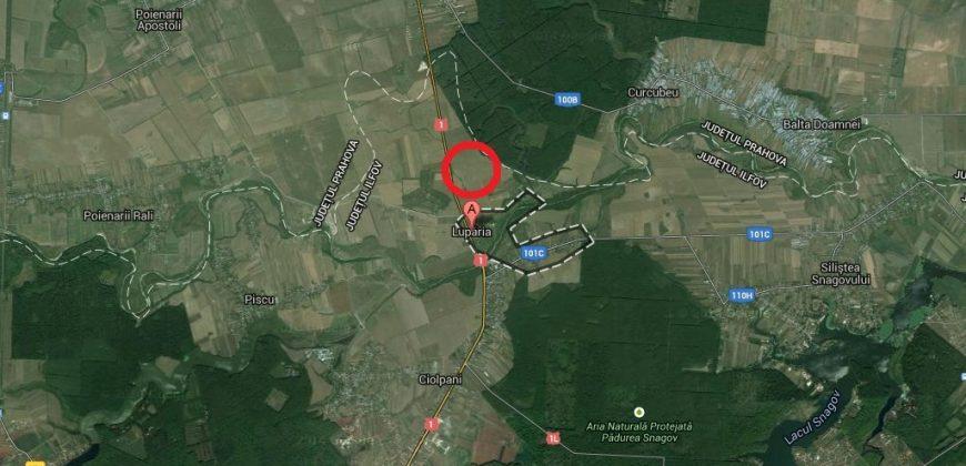 Teren agricol, Ciolpani, Zona Luparia